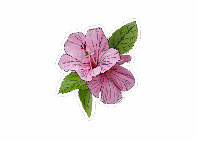 hibiscus_decal_4.27_wide